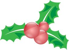 Christmas Holly Decoration Stock Images