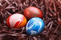 Free Easter Nest Royalty Free Stock Image - 17025836