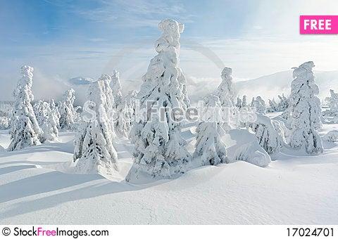 Free Winter Landscape Stock Image - 17024701