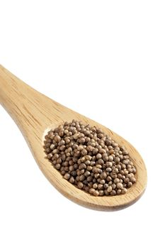 Free Coriander Spoon Stock Photos - 17020073
