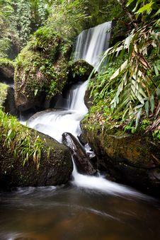 Free Peaceful Waterfall Royalty Free Stock Photo - 17020085