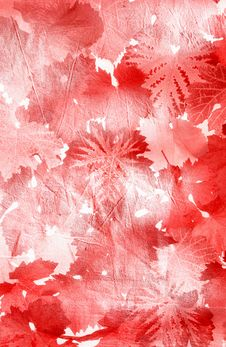 Free Red Leaves Royalty Free Stock Photos - 17020118