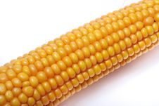 An Ear Of Ripe Corn Stock Images