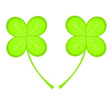 Free Clover Stock Photography - 17022352