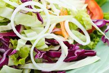Free Chicken Salad Stock Image - 17023231
