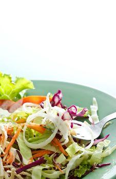 Free Chicken Salad Stock Photos - 17023593