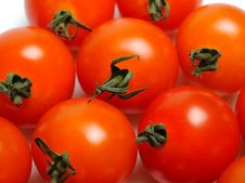 Free Many Beautiful Red Cherry Tomato Isolated Stock Photo - 17024490