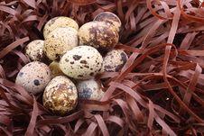 Free Quail S Eggs Stock Images - 17025804