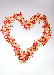 Free Heart Royalty Free Stock Photos - 17026308