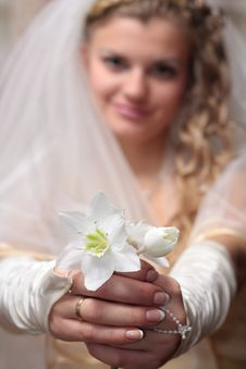 Bride With A Wedding Bouquet Stock Photography
