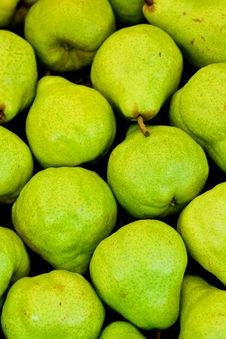 Free Pear Background Stock Image - 17027571