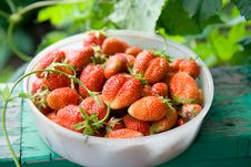 Free Strawberry Royalty Free Stock Photography - 17027587