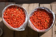 Free Red Currants Stock Photography - 17027732