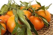 Free Mandarines Royalty Free Stock Photos - 17028138