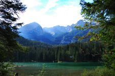 Tovel Lake On Alps Stock Photography