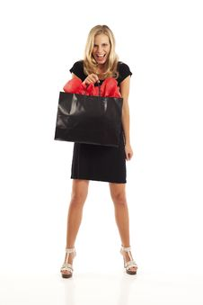 Free Young Woman With Shopping Bag Royalty Free Stock Images - 17029609