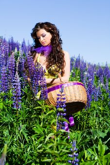 Free Woman In Plant Of Violet Wild Lupine Stock Photo - 17030030