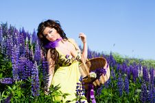 Free Woman In Plant Of Violet Wild Lupine Stock Image - 17030091