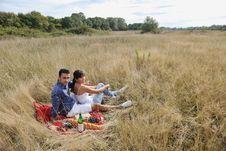 Free Happy Couple Enjoying Countryside Picnic Stock Images - 17030134