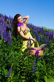 Woman In Plant Of Violet Wild Lupine Royalty Free Stock Image