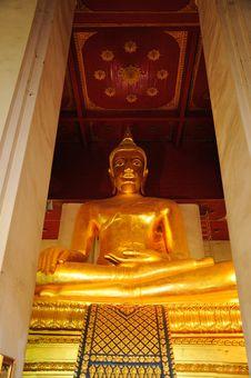 Free Big Golden Budha Royalty Free Stock Photo - 17033055