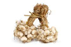 Free Garlic Isolated On White Stock Photo - 17033600
