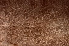 Free Brown Wood Texture Royalty Free Stock Photos - 17033788