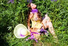 Woman In Plant Of Violet Wild Lupine Stock Photography