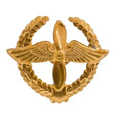 Free Emblem Of The Air Forces Stock Photography - 17035652