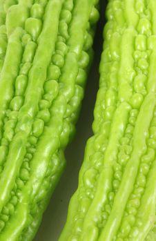 Free BITTER GOURD VEGETABLE Stock Image - 17035881