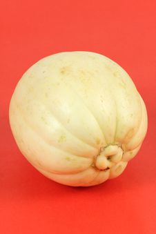 Free Melon Stock Photography - 17036142