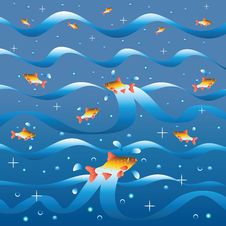 Fishes Lap In River Waves. Stock Photo