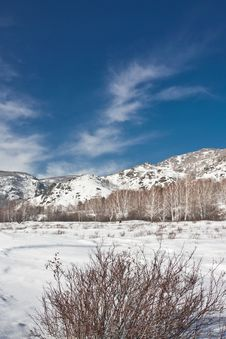 Free Winter Landscape With Mountains And A Bush Stock Images - 17036984