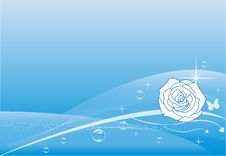 Free Blue Rose Background Stock Photography - 17039142