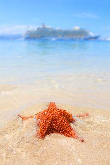 Free A Cruiseship And A Starfish Royalty Free Stock Photography - 17039667