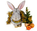 Free Gray Rabbit And Christmas Decorations Royalty Free Stock Photos - 17044598
