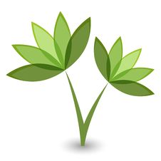 Free Green Flower Stock Image - 17041021