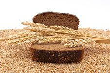Slice Bread With Wheat Ears Stock Images