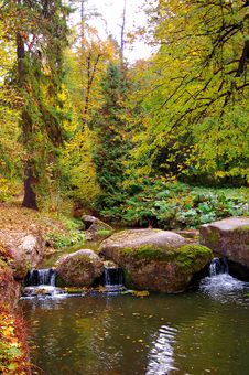 Small River Is In The Autumn Forest Stock Images