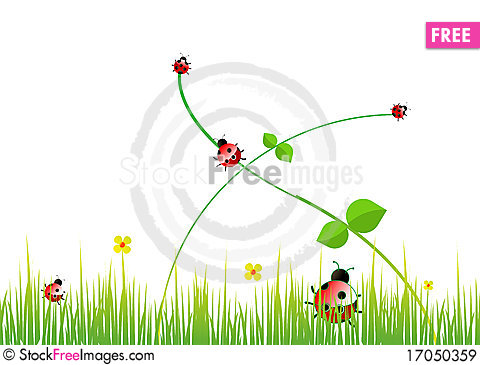 Free Lady Bugs Royalty Free Stock Images - 17050359