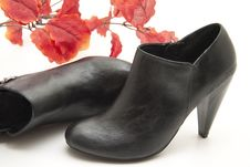Free Black Lady Shoe With Leaves Royalty Free Stock Images - 17050099