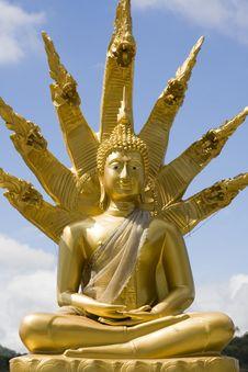 Free Buddha Royalty Free Stock Photos - 17052018