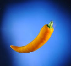 Free Close Up Of Yellow Chilli Royalty Free Stock Image - 17054346