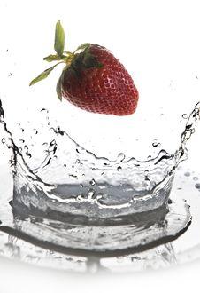 Free Fruits Stock Image - 17055671