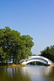 Free White Bridge In The Park Stock Images - 17055784