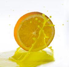 Free Fruits Royalty Free Stock Image - 17055796