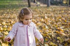 Free Curious Little Girl Stock Photo - 17058440