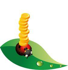 Free Ladybug Money Royalty Free Stock Photo - 17059015