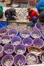 Free Fishermen Sorting Fish In Harbor Stock Image - 17061941