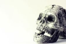 Free Skull Royalty Free Stock Images - 17061299